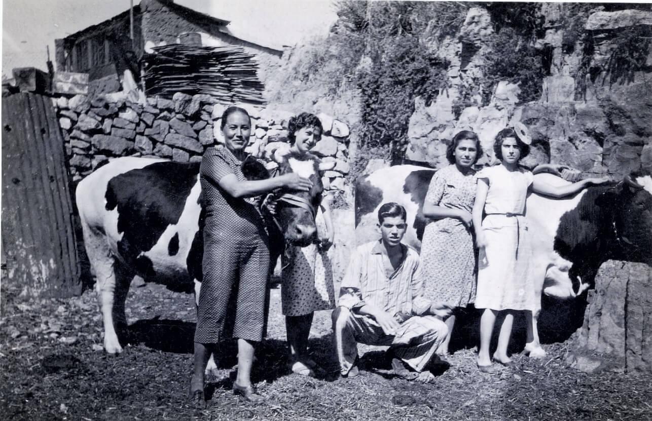 משפחת מזרחי